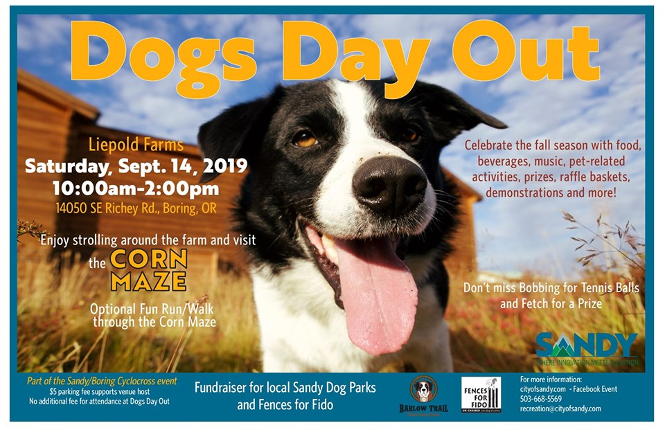fff dogs day out promo