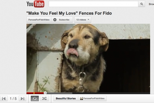 Fences for Fido has its own YouTube channel